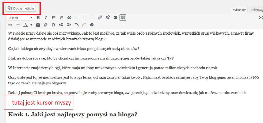 jak zrobić bloga ktory zarabia pierwszy wpis6