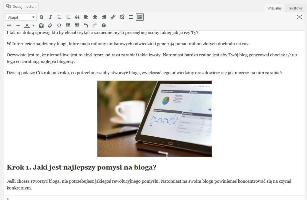 jak zrobić bloga ktory zarabia pierwszy wpis8